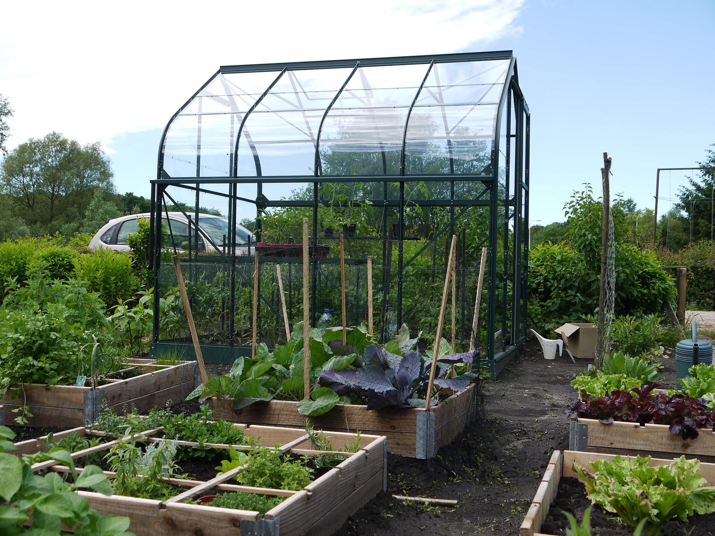 Kabinet pepijn verheyen eetbare tuin manual voor for Groenten tuin